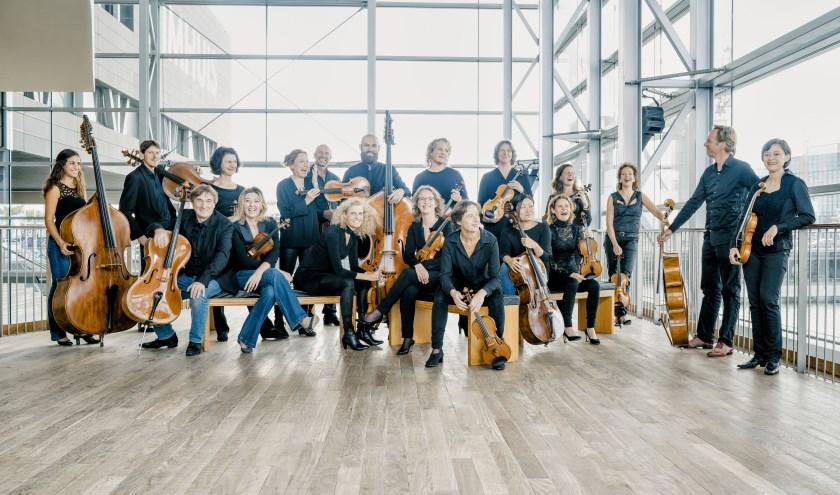 Sinfonietta in Veere - Sinfonietta String FestivalZeeland in de Grote Kerk Veere