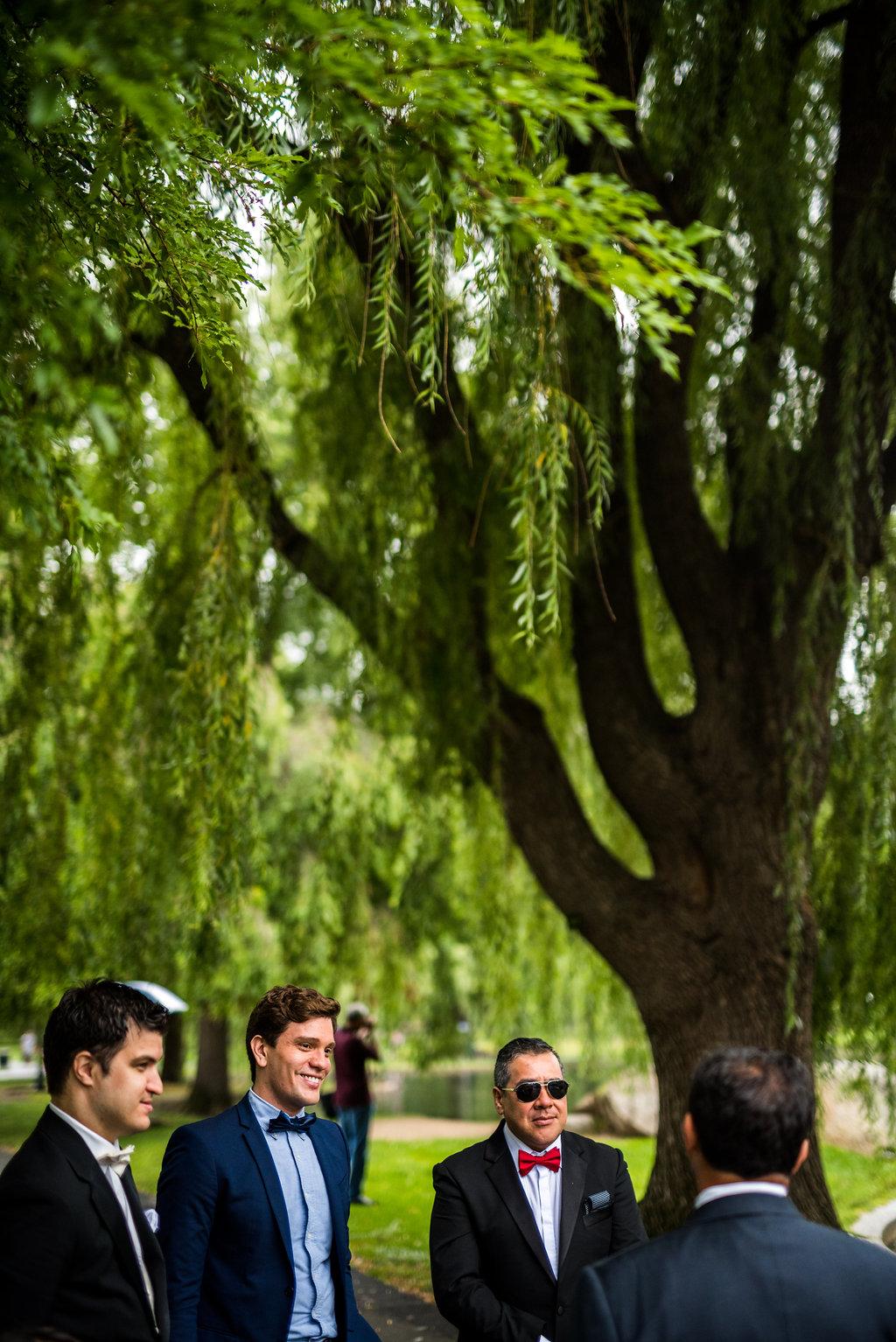 boston public garden wedding groomsmen