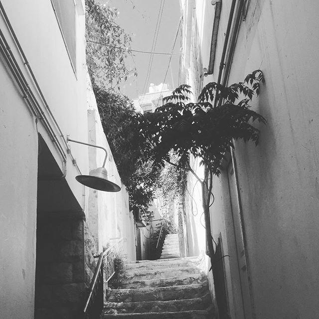 #shams #journey #jordan #morning #black and white