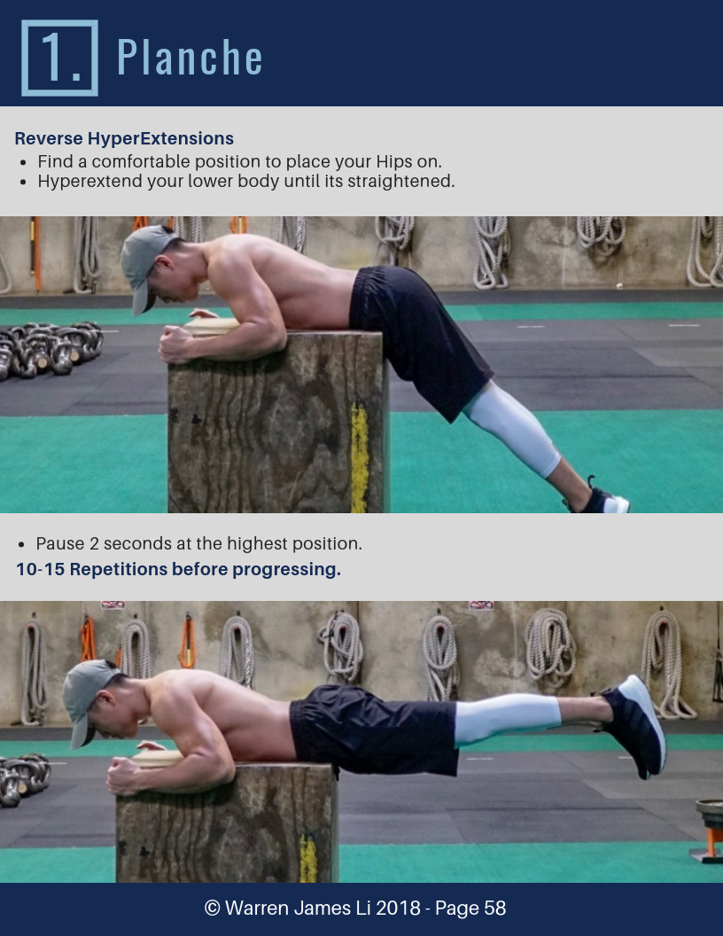 9. Planche 9 ExercisesTo Get Strong With Calisthenics.png