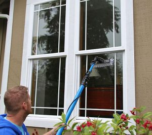 exterior windows 3.jpg