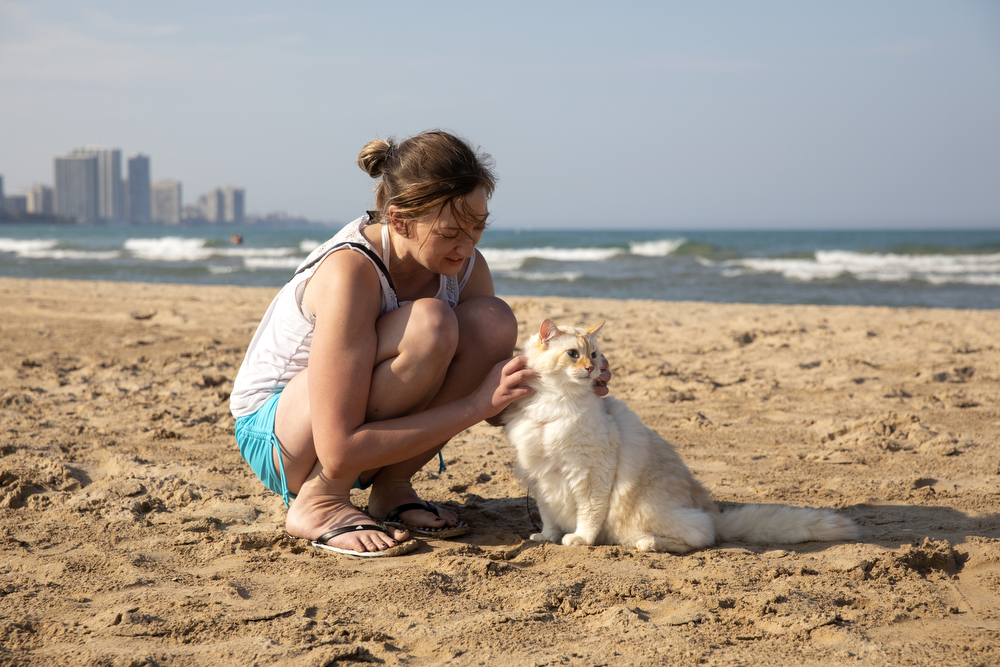 Poofy the 17-year-old cat hangs out with owner Sara Tait at Montrose Beach on a warm Thursday, Sept. 20, 2018, in Chicago. (Erin Hooley/Chicago Tribune)