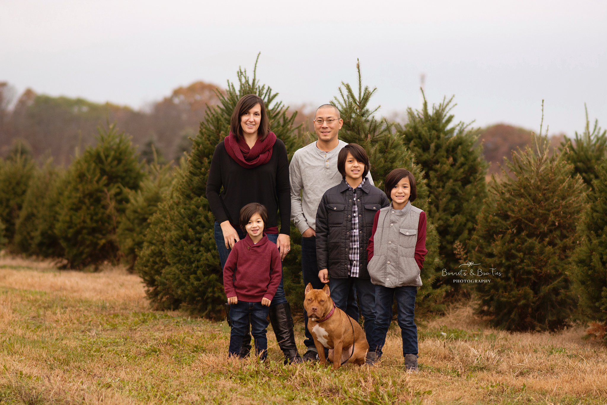 haring tree farm session goldsboro pa.jpg