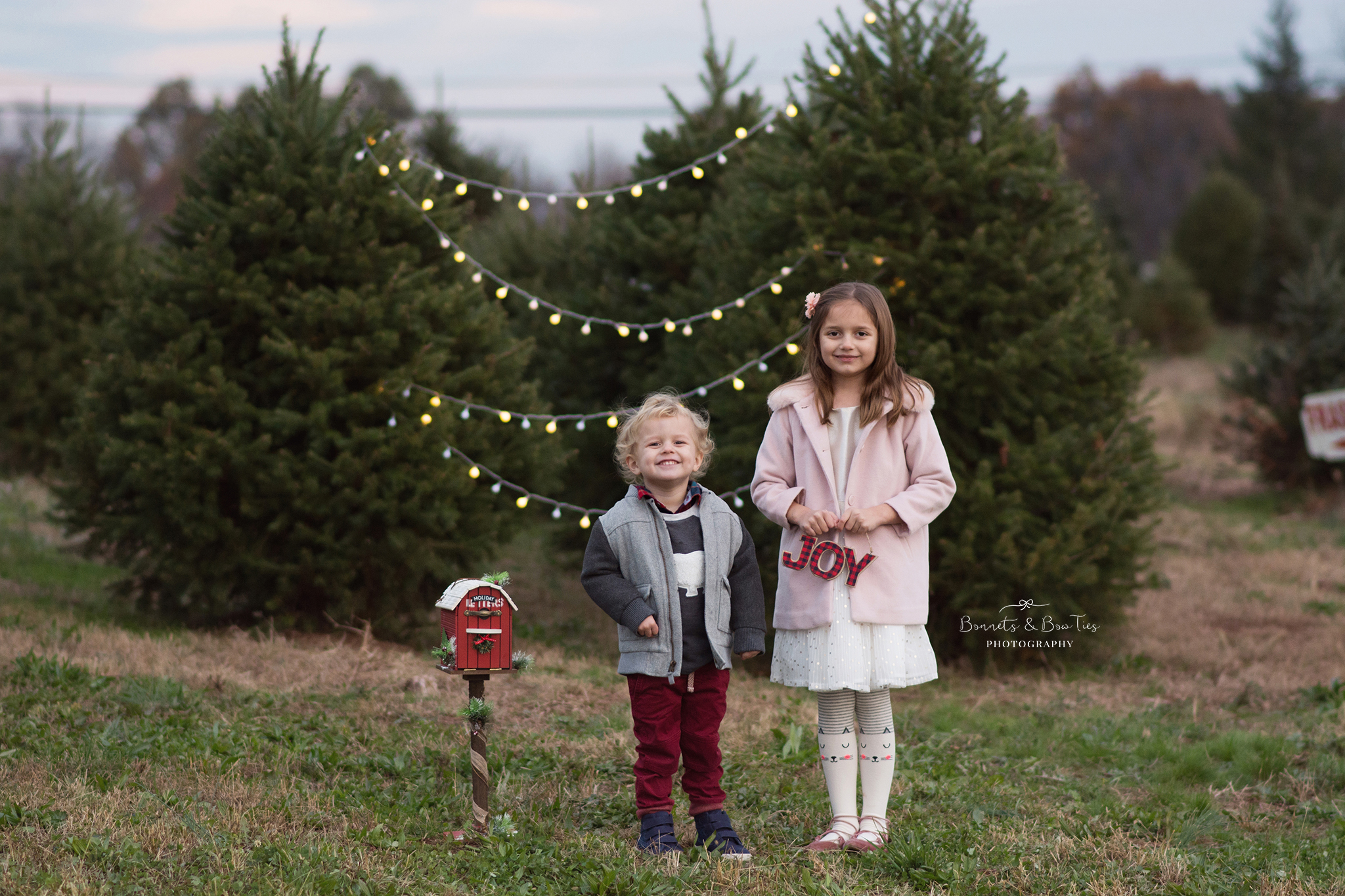 christmas tree farm session with children at haring tree farm.jpg