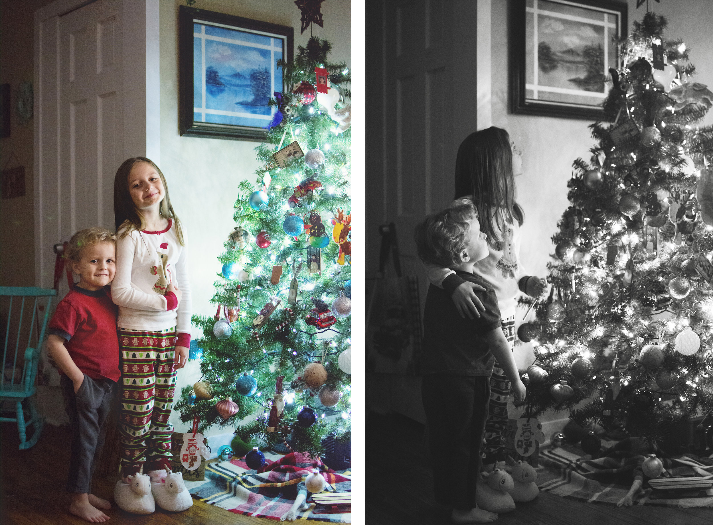 photos of kids in front of christmas tree.jpg