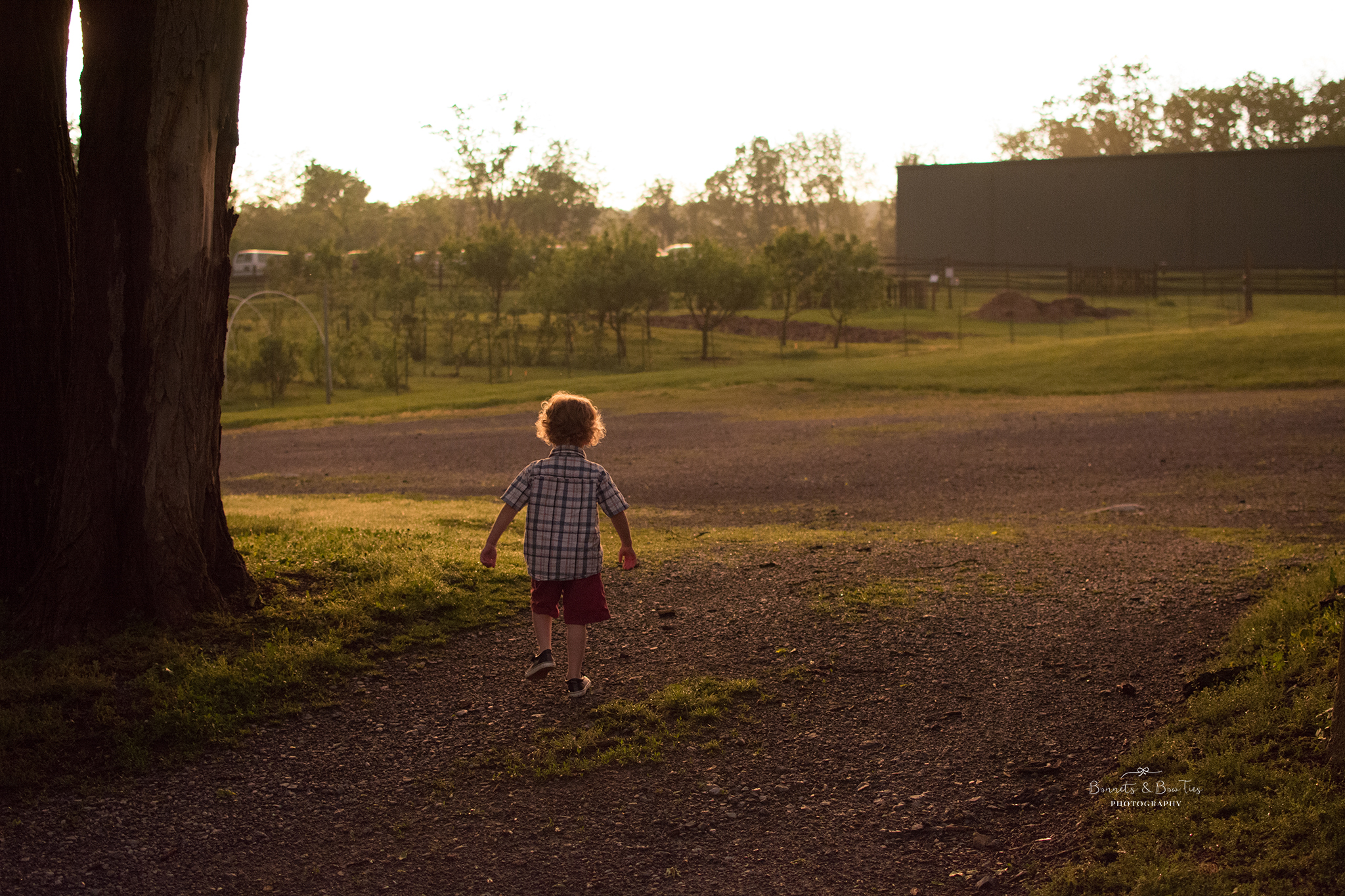 golden hour portrait of a young boy.jpg