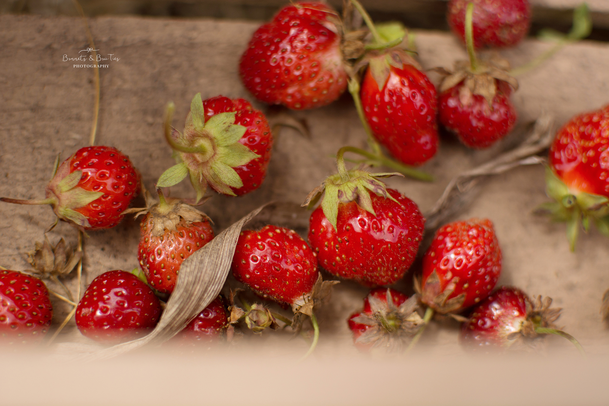bunches of strawberries.jpg