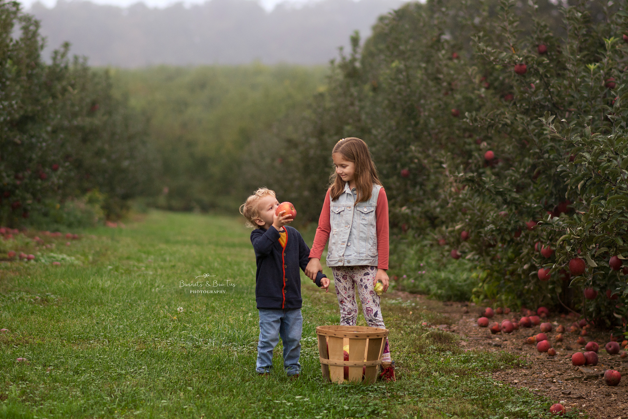 apple orchard mini session mount wolf pa.jpg