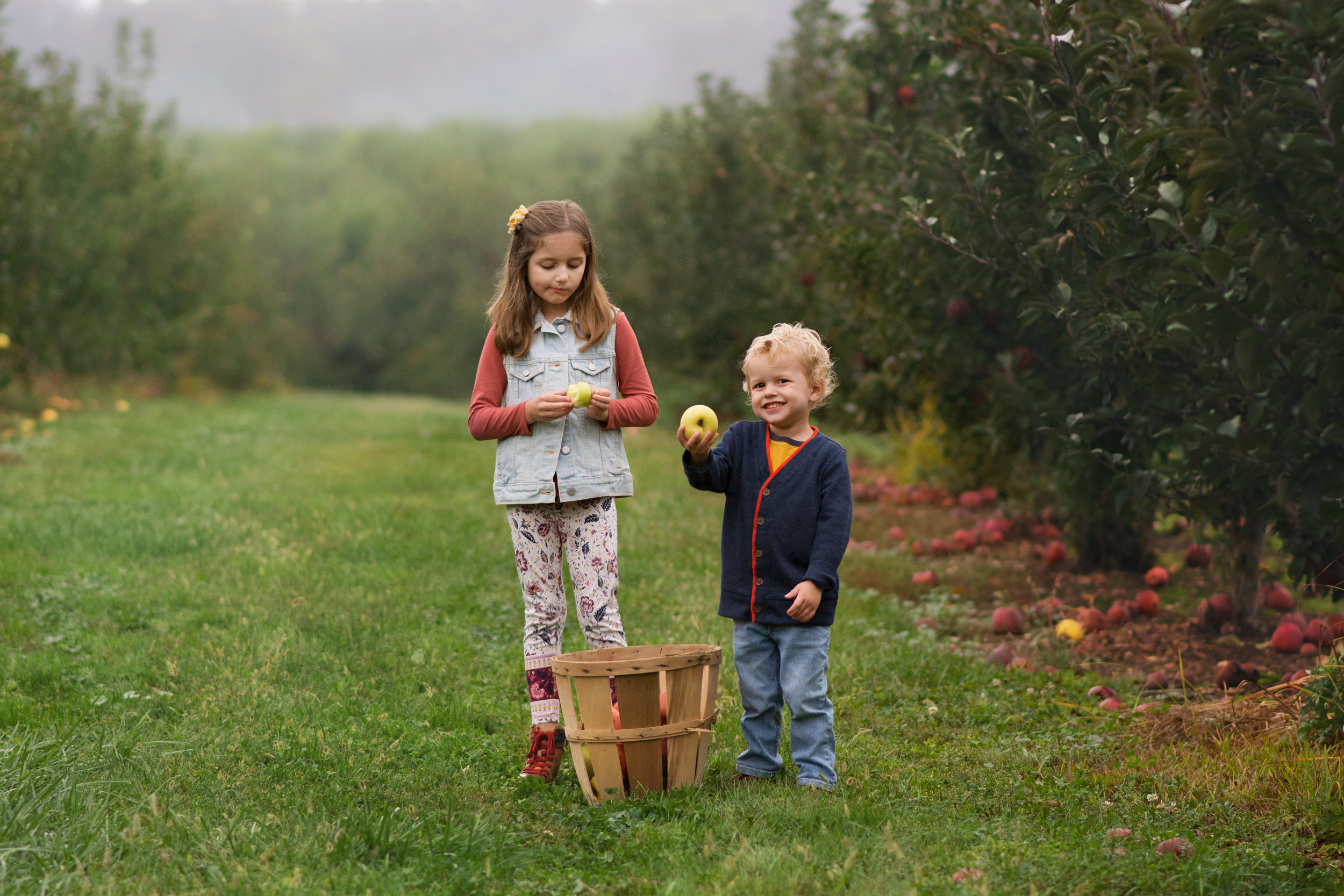 apple orchard photo session at forge hill mount wolf pa.jpg
