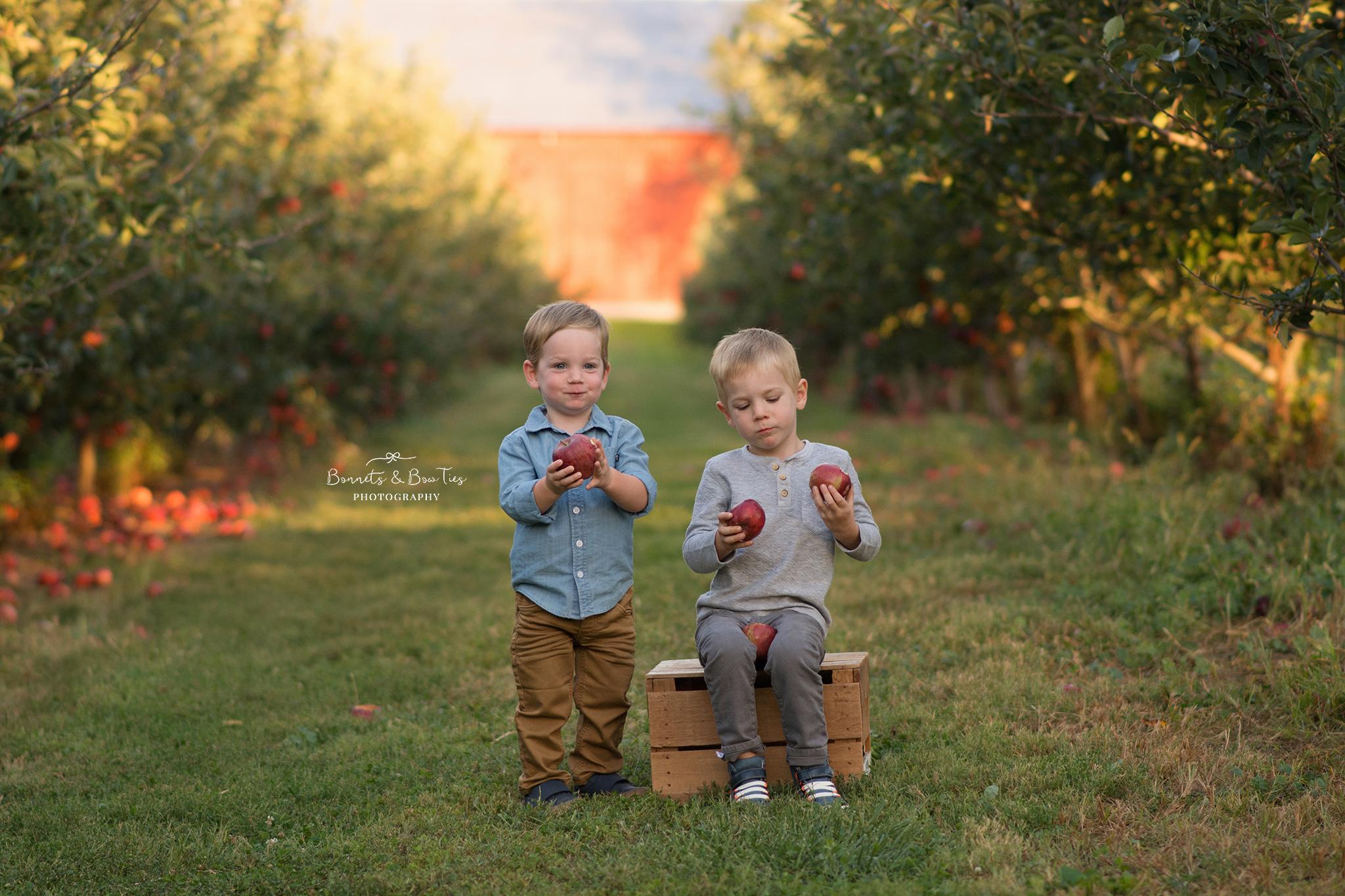 children's session at apple orchard.jpg