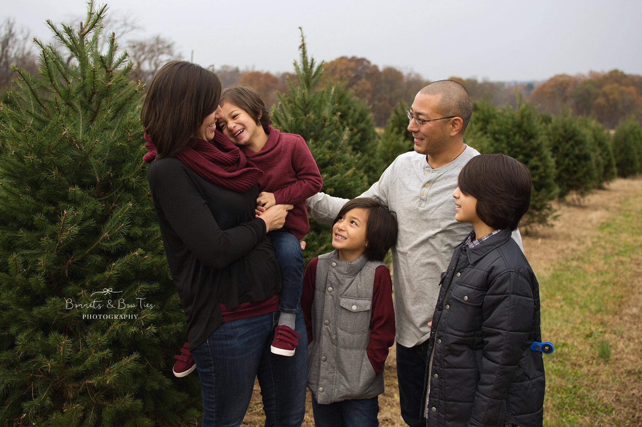 tree farm mini session york pa