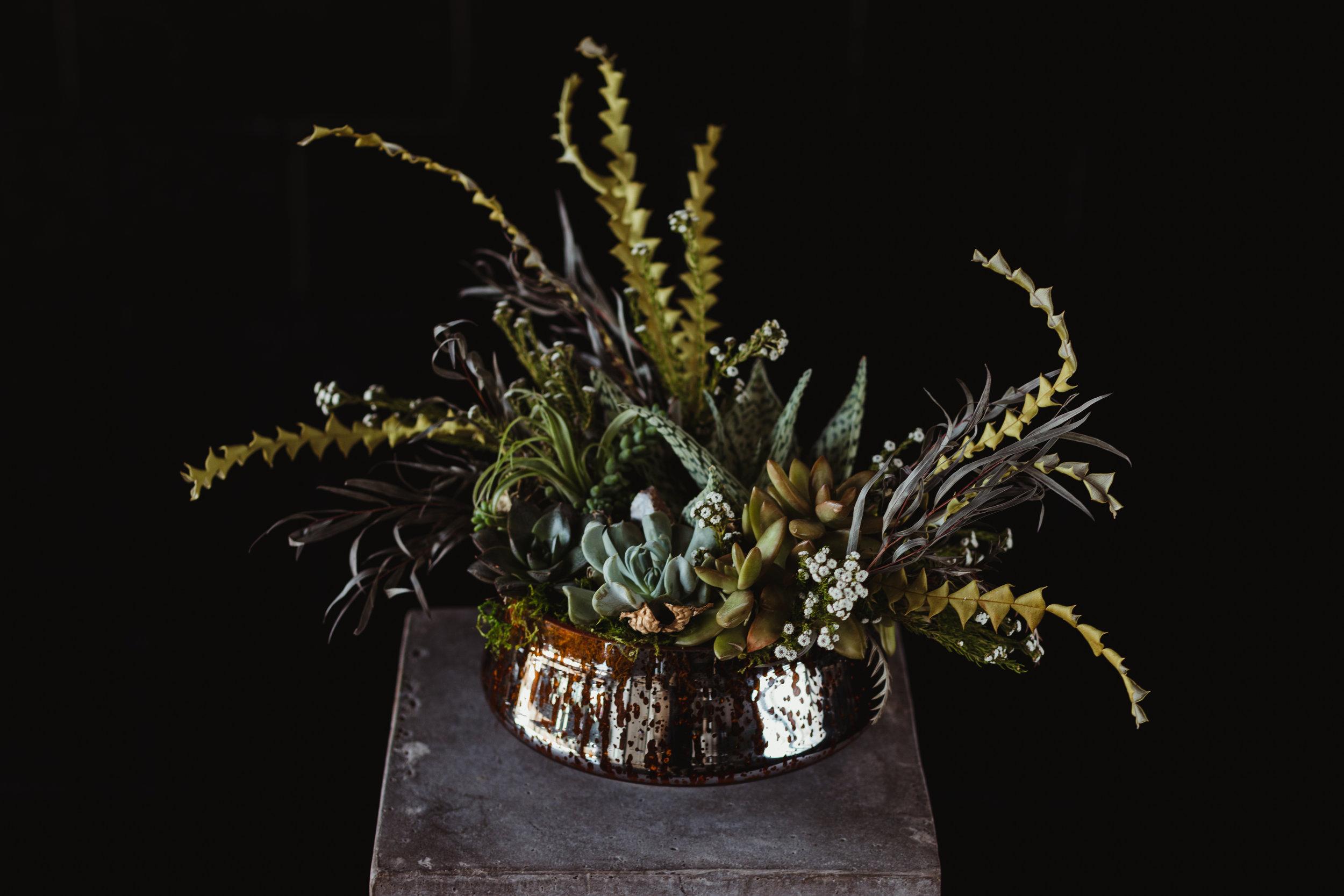 succulent arrangment -8.jpg