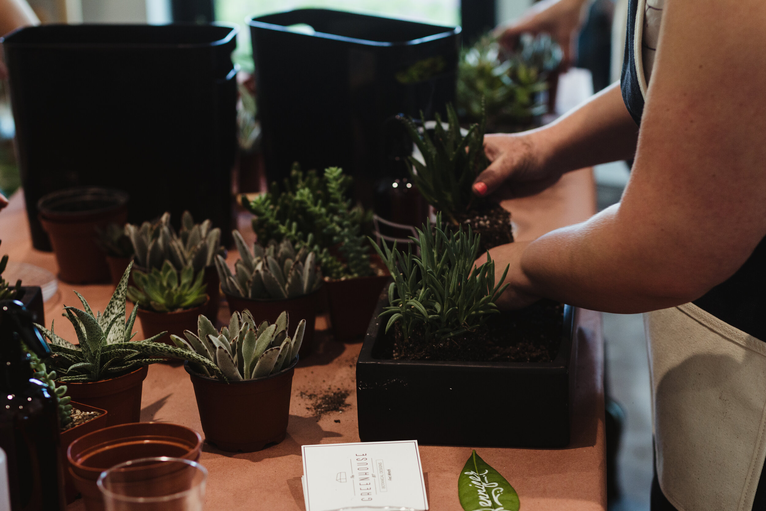 gifted_class_workshop_succulent42.jpg