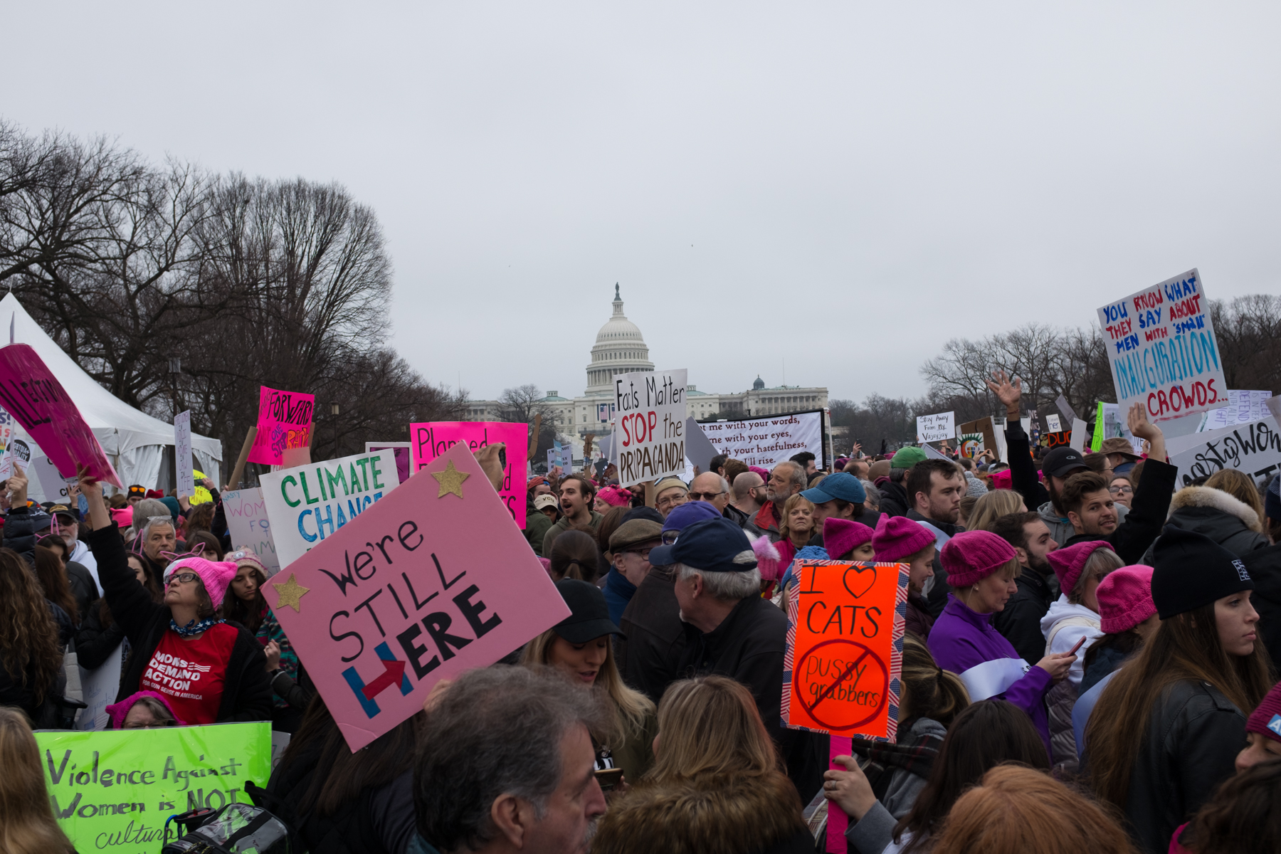 Schuetz_WomensMarchonWashington-4.jpg