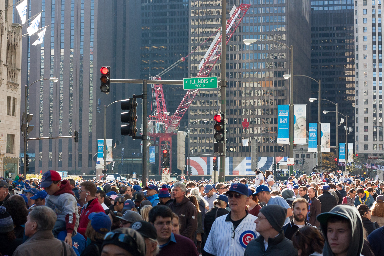 Cubs_Win_World_Series_Laura_Suprenant_Photography-8.jpg