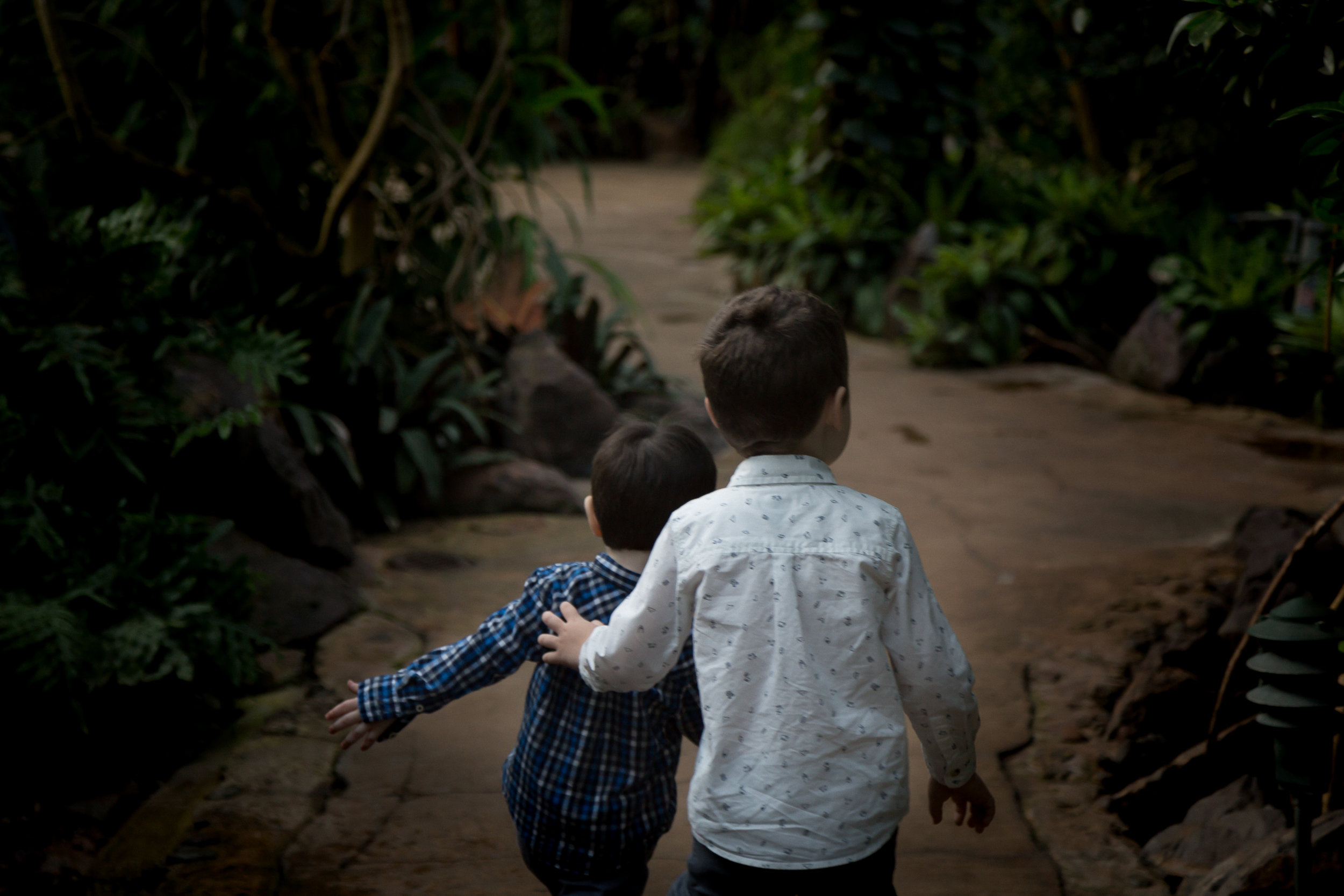 Chicago_Photographer_Garfield_Park_Conservatory_Family_Holiday-10.jpg