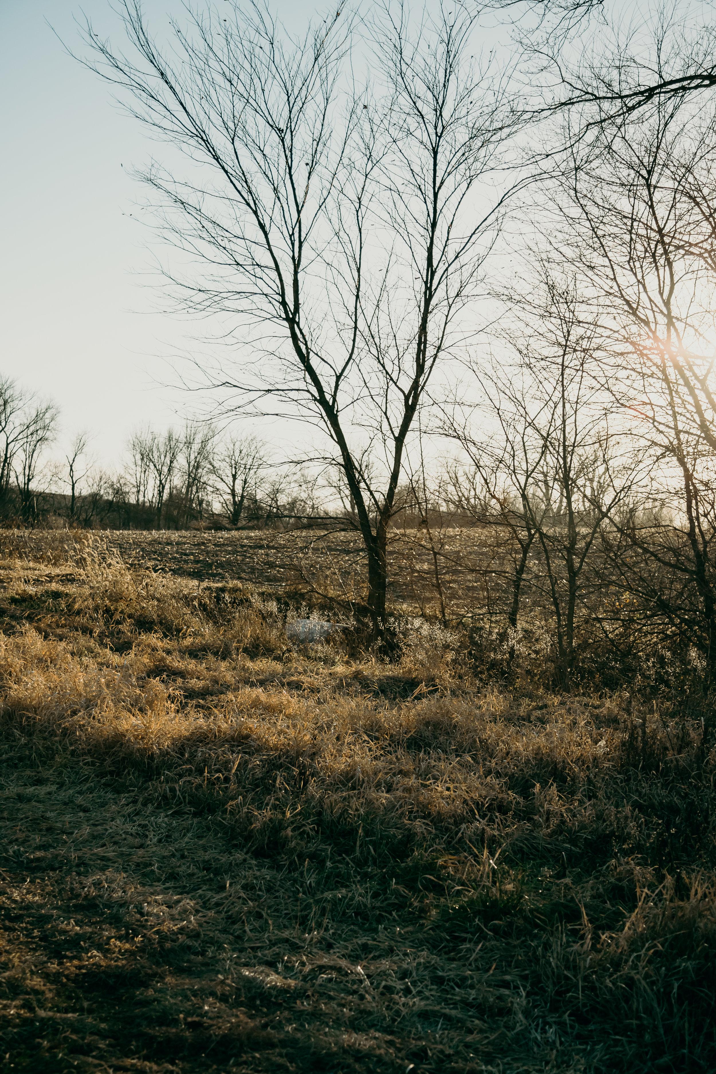 Farm_fun_phil_chester_presets_chicago_photographer-9.jpg
