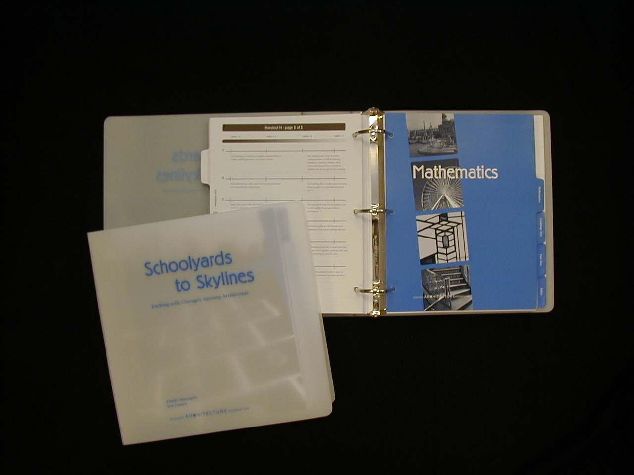 """I am the primary author of """"Schoolyards to Skylines: Teaching with Chicago's Amazing Architecture"""", (2002) a K-8 teacher resource book that uses local architecture as a tool for teaching the 5 core academic subjects."""