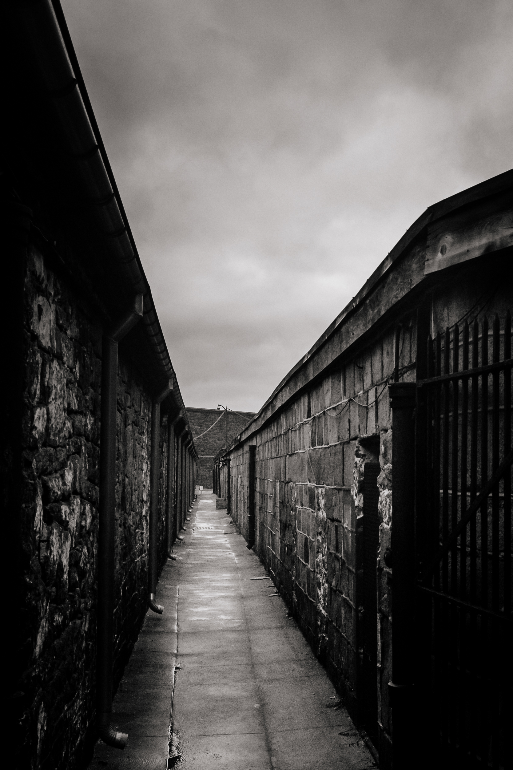 prison yard, 2015.