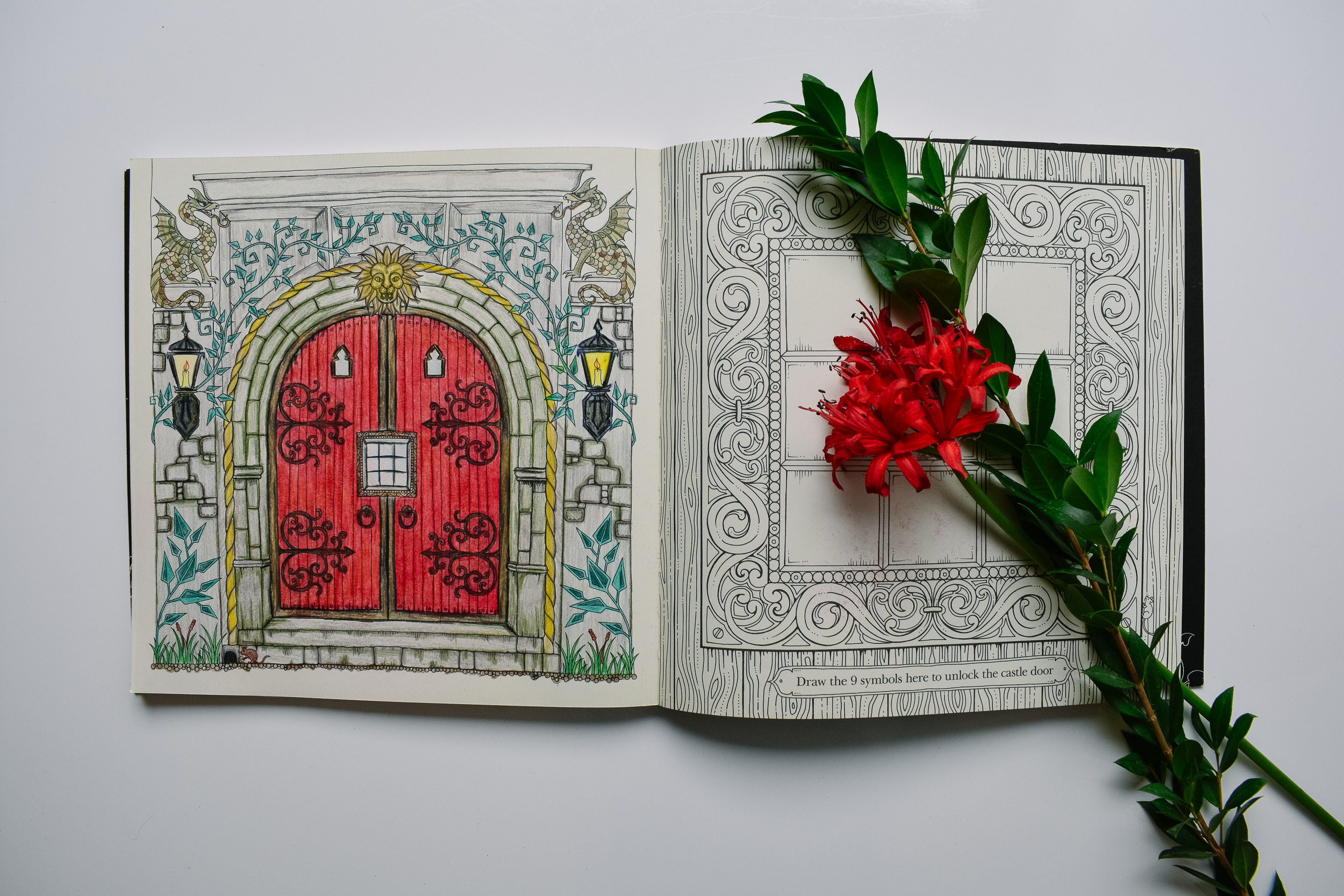 Adult Coloring Book - Coloring can be a great way for busy minds to slow down and meditate. The intricate designs are stunning and make everyone feel like an artist.