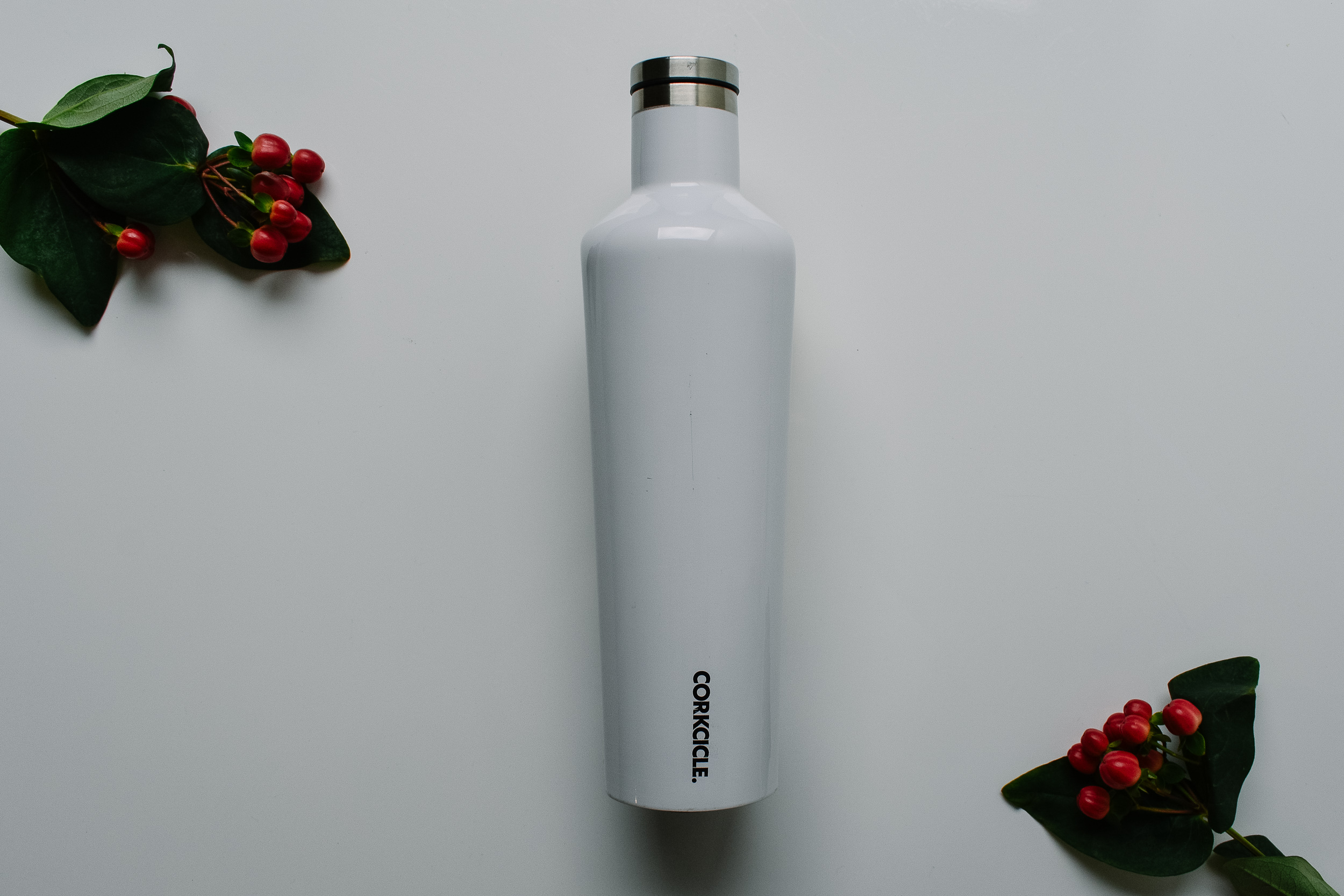 Corckcicle Thermos - The Corckcicle 25 oz. Canteen holds an entire bottle of wine! I've used to bring cold Rose and hot French Press coffee to the park (but not at the same time). It's perfect for day hikes and rooftop parties.