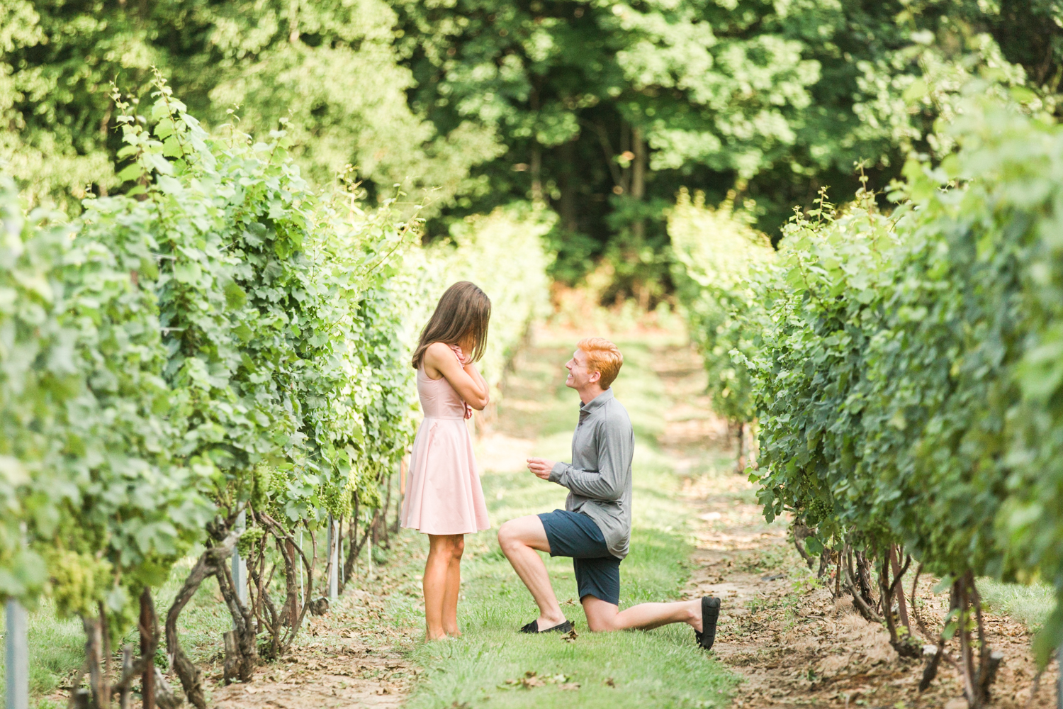 chamard-vineyards-clinton-ct-propsal-session-top-connecticut-nyc-westchester-destination-wedding-engagement-boudoir-photographer-shaina-lee-photography-photo-28.jpg