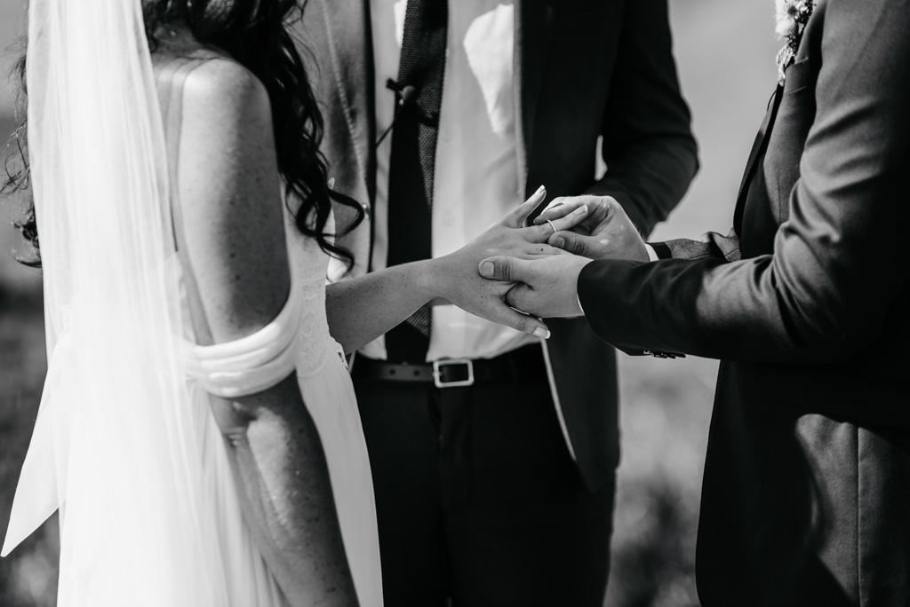c&t taranaki wedding-90.jpeg