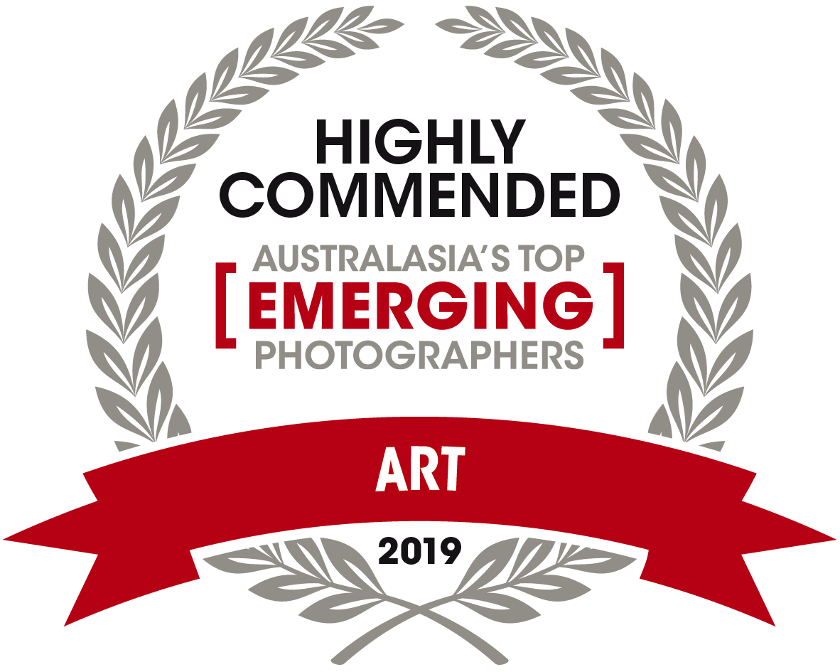 10553 CPH ATEP - ART_highly commended.png