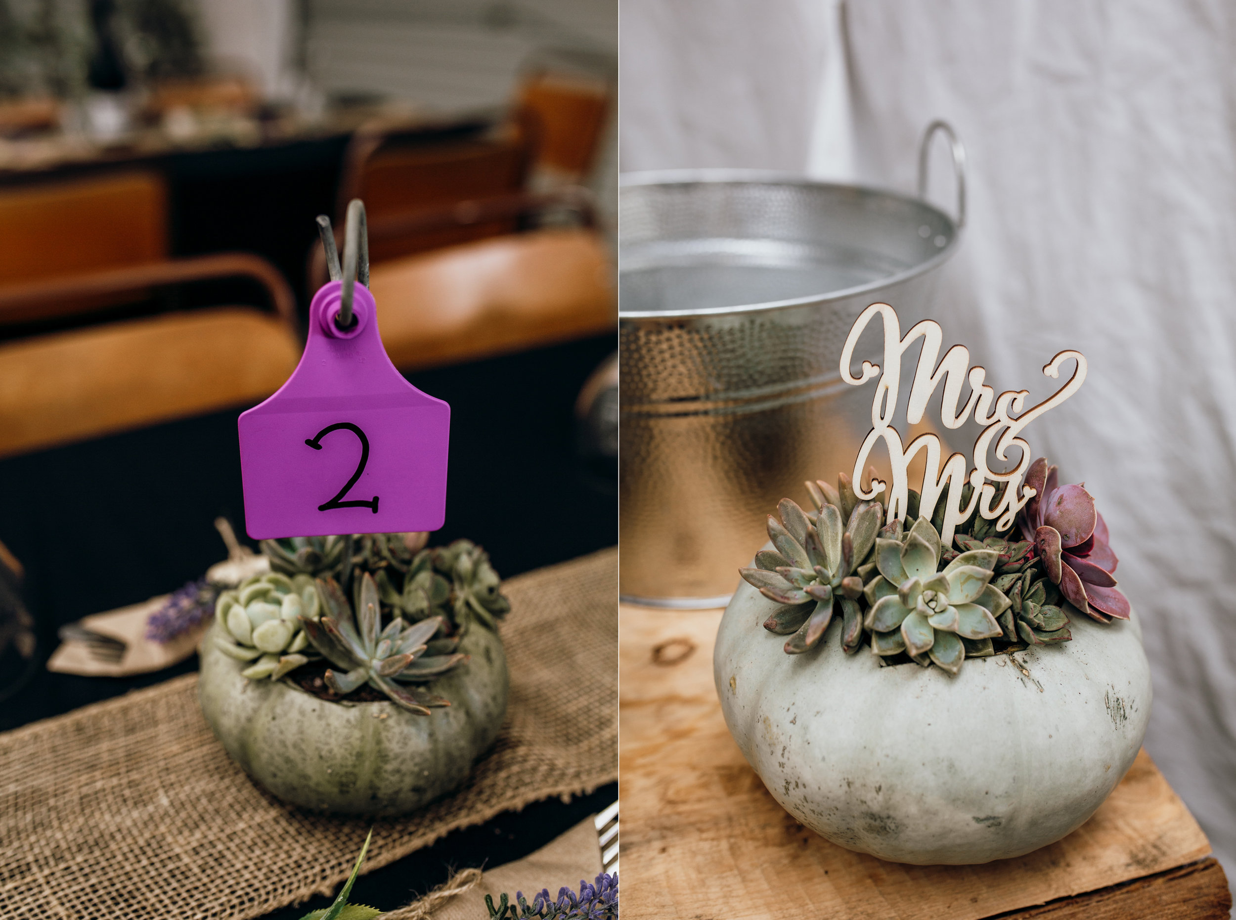 taranaki wedding-1n.jpg