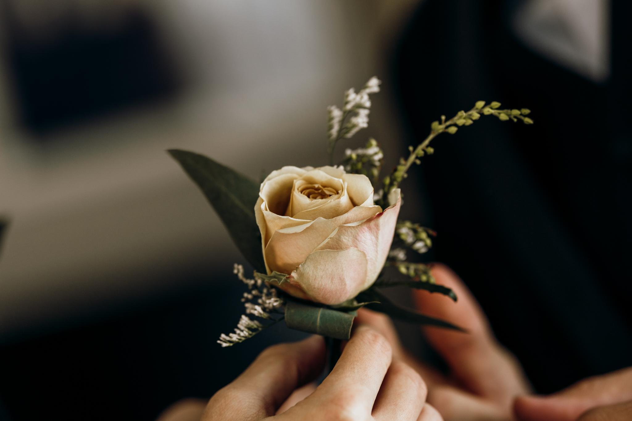New Plymouth wedding-36.jpg