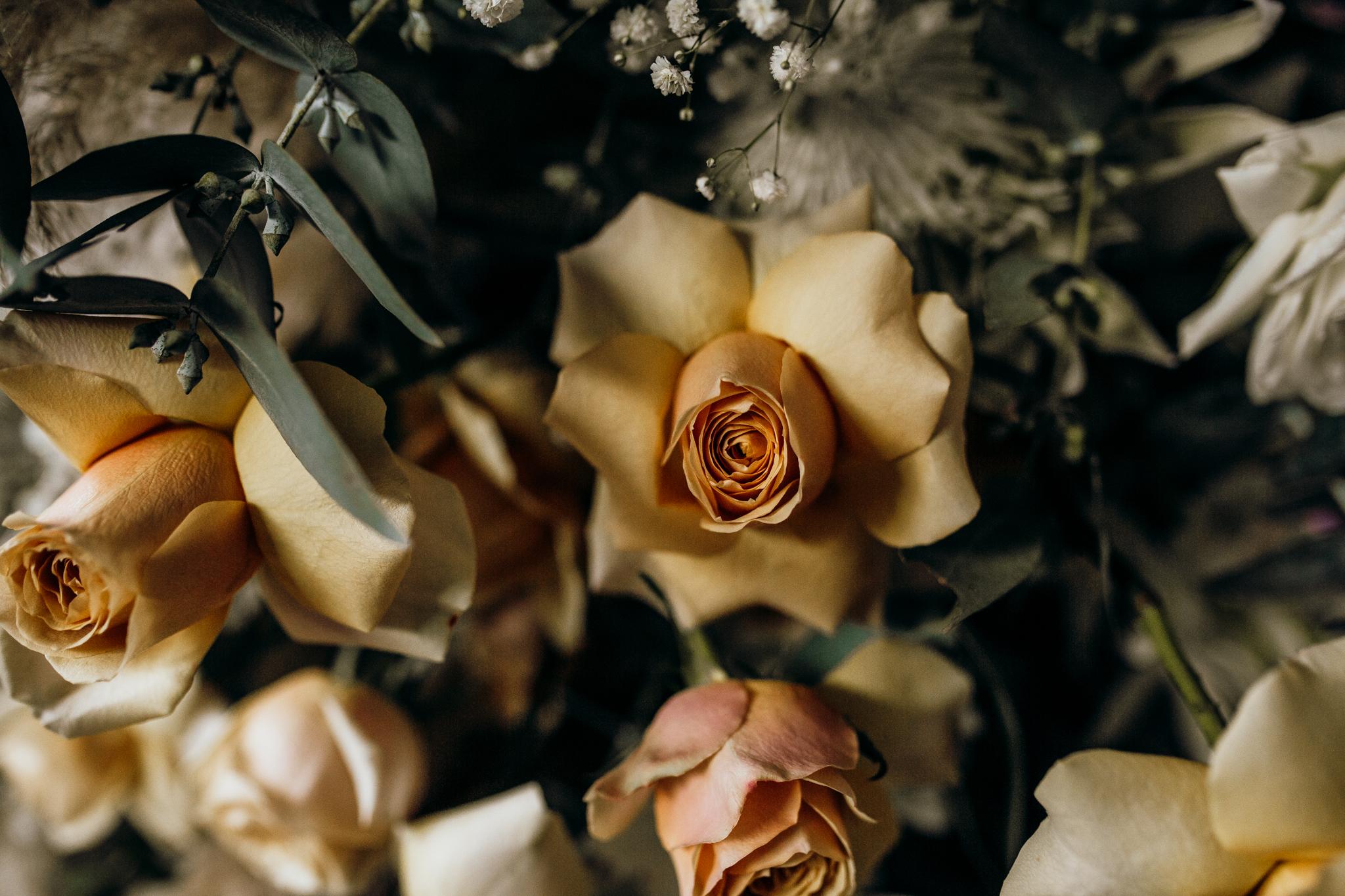 New Plymouth wedding-197.jpg