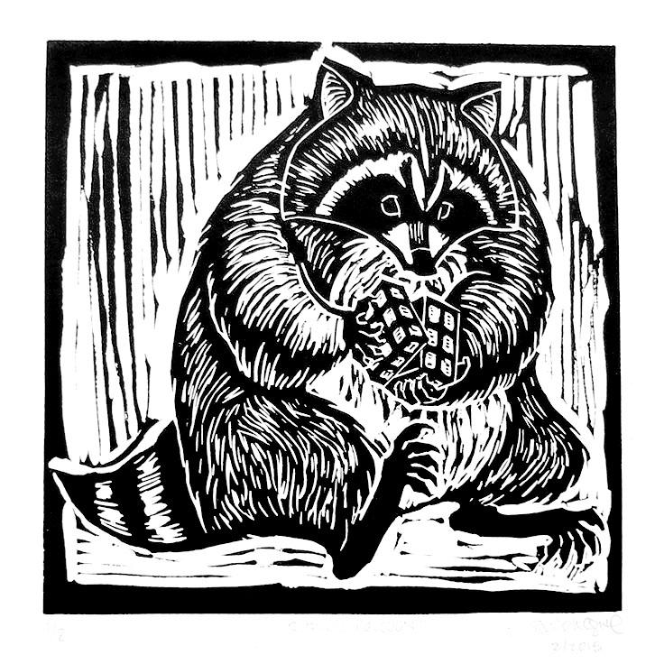 Rubik's Raccoon