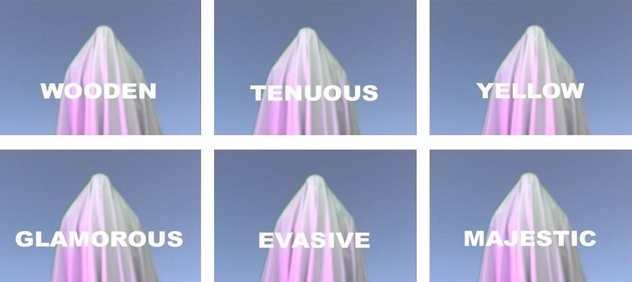 Simultaneous Repellents (Repressed Sentient, Oppressed Séance)  , 2008 Detail of Video Stills