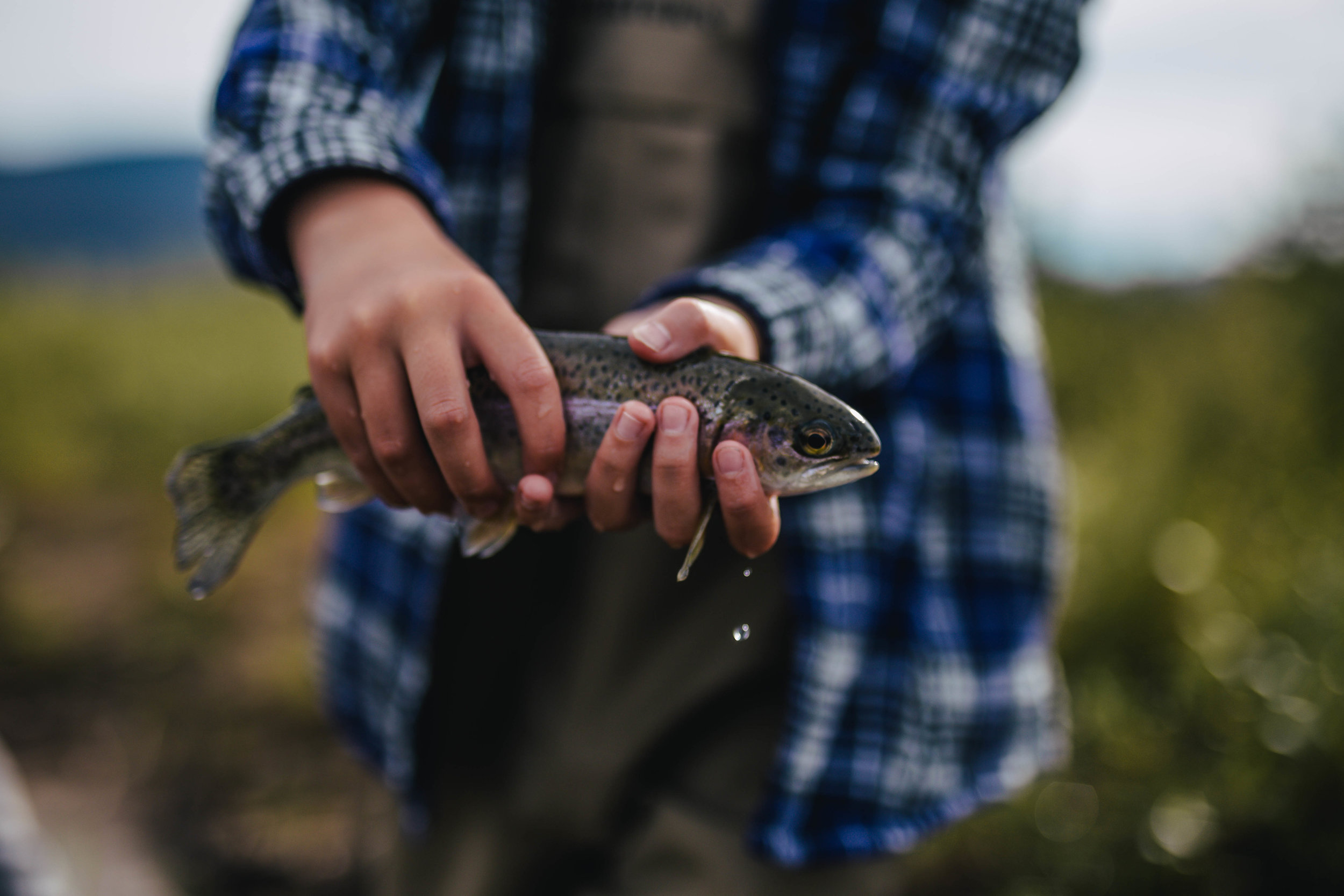 This 🐟 was 🎣 with  @maddiebrenneman and  @martinpazdan on the Colorado River   Photo by The Curated Feast
