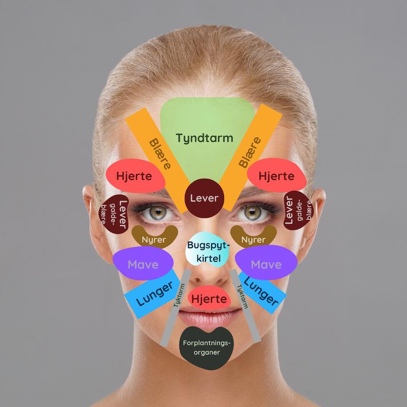 I følge kinesisk facemapping er den følsomme hud under og omkring øjnene forbundet med nyresystemet.