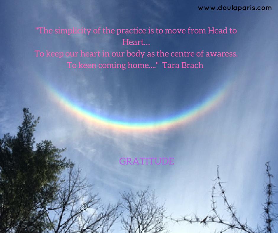 J'adore les meditations guidé de Tara Brach, elles m'inspirent beaucoup les thèmes de mes cours de yoga prénatal. Ecoutez ces très belles meditations (en anglais) de Tara Brach ici:www.tarabrach.com/guided-meditations/
