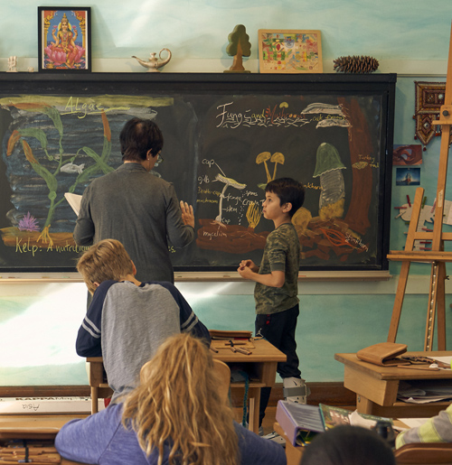 Waldorf teachers turn the ordinary chalkboard into an extraordinary teaching tool. Above: a 5th grade botany lesson.