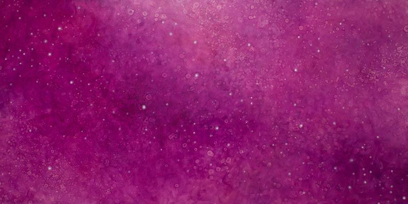 Brooke Wayne,  Cosmic & Microscopic I , oil on canvas, 32 x 76 inches, 2013