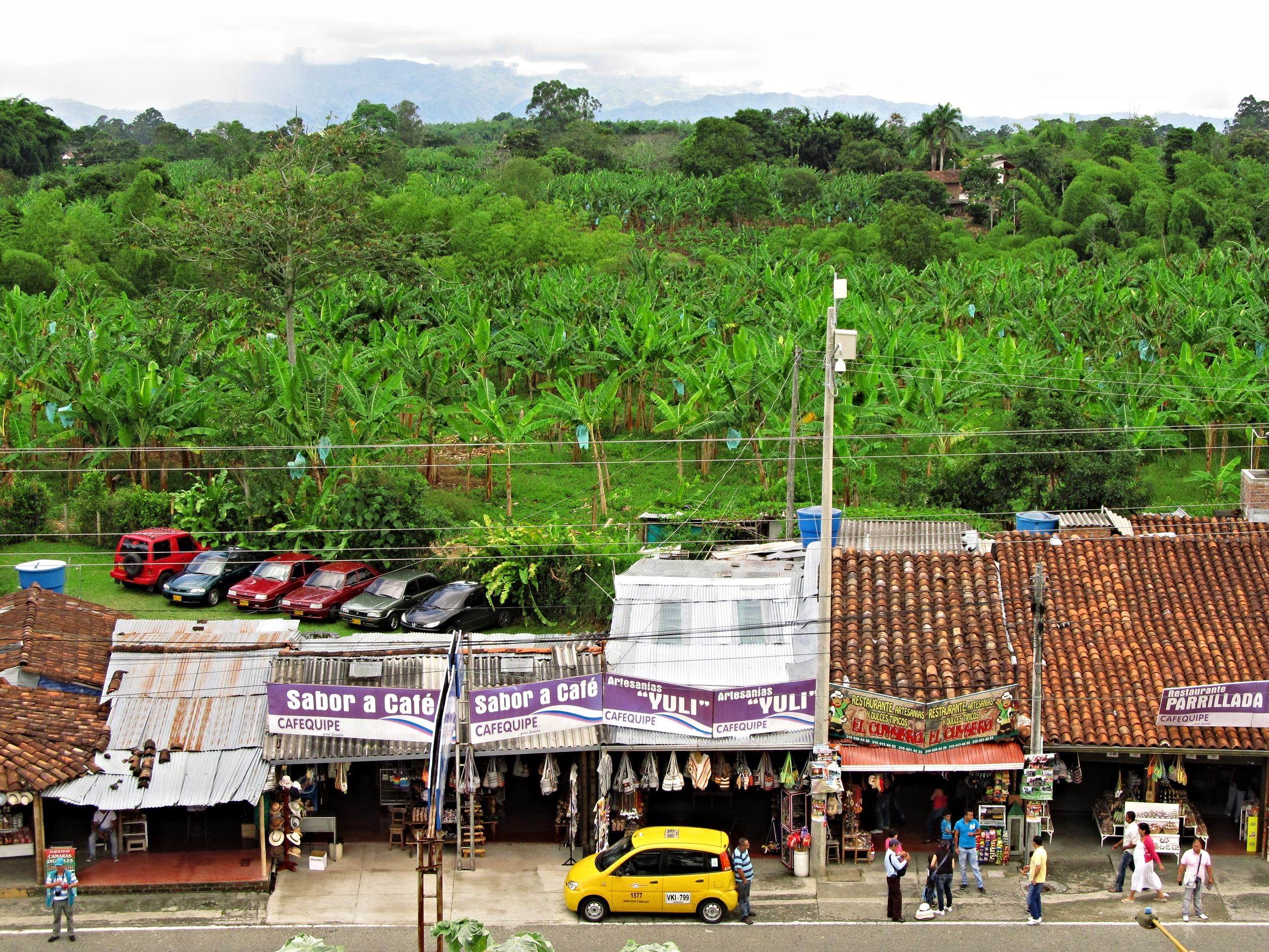 Road side views in La Zona Cafetera