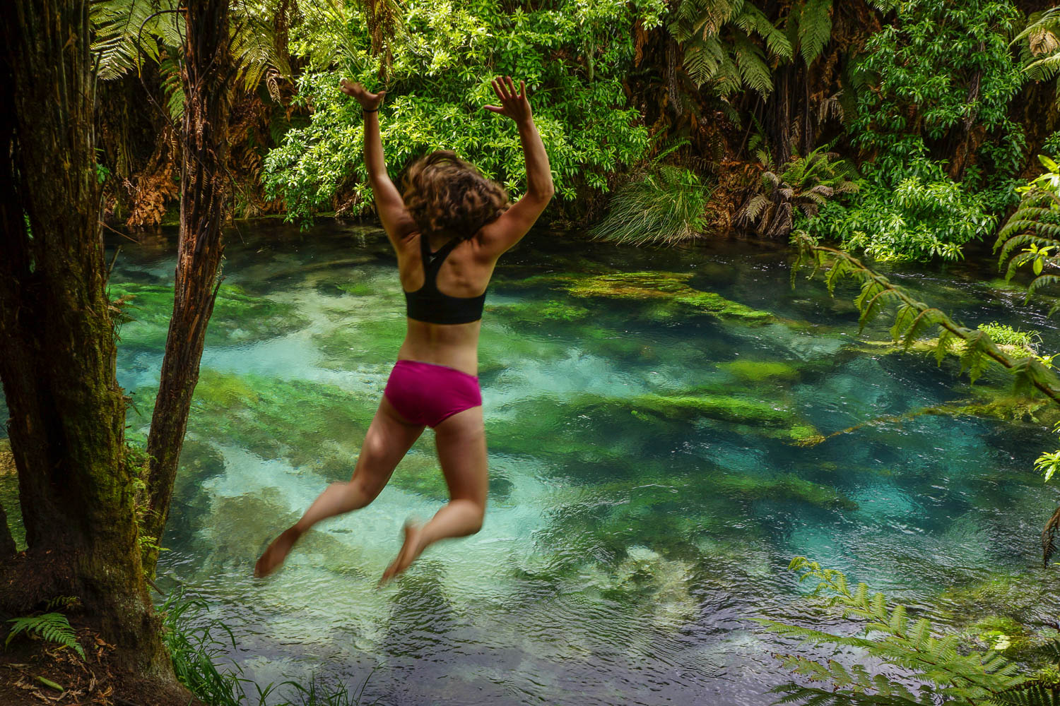 Except for that one time I jumped in Blue Spring with 11 degree water and immediately regretted it.