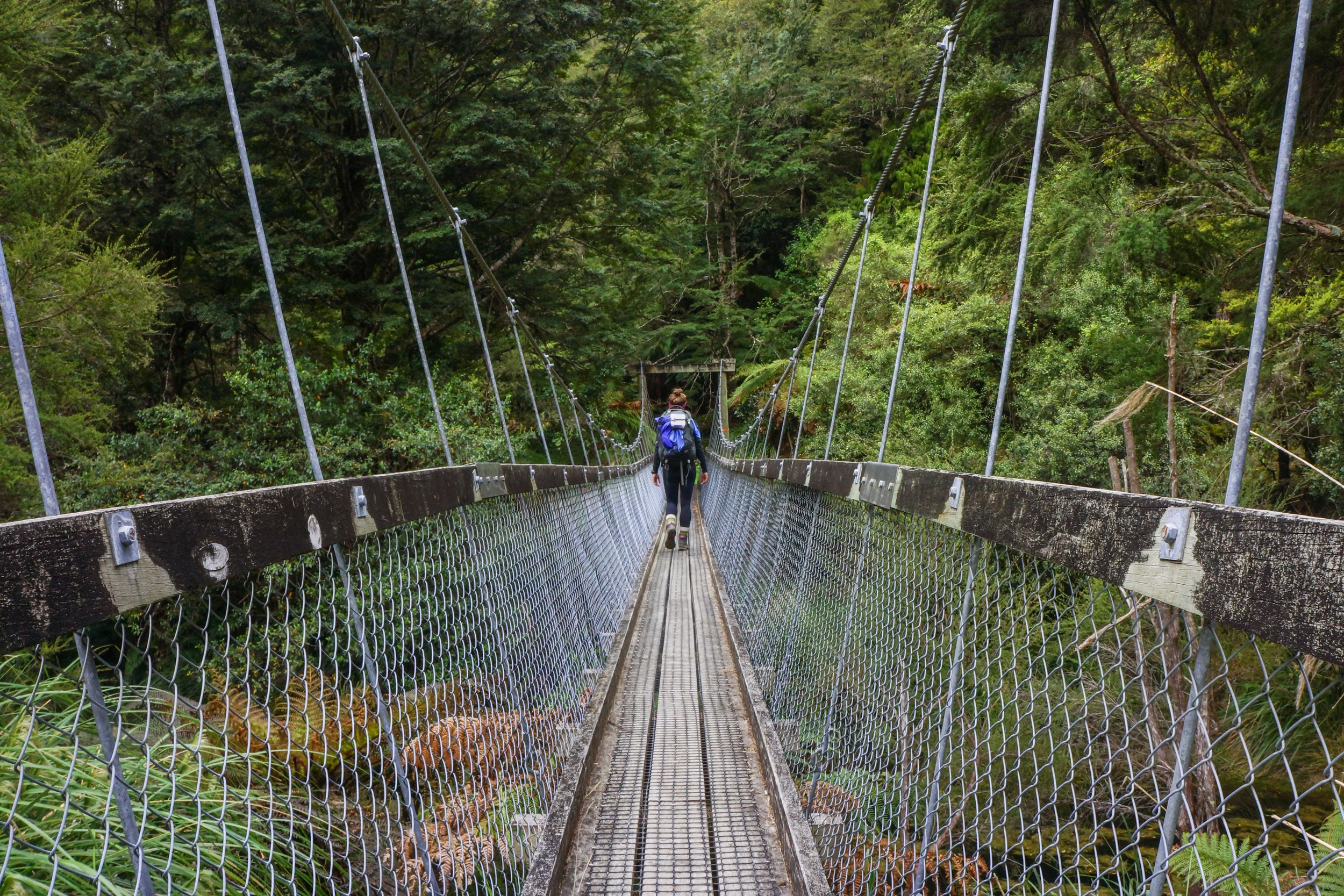 Hanging bridges are not for the faint of heart.