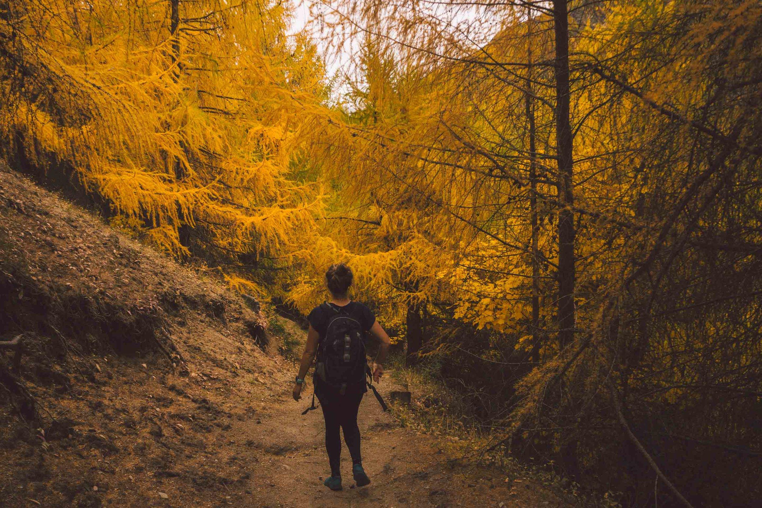 Arrowtown Hiking