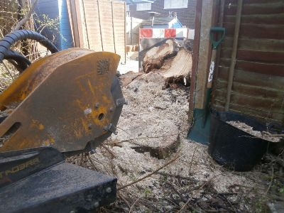 Positioning a large stump grinder next to a stump