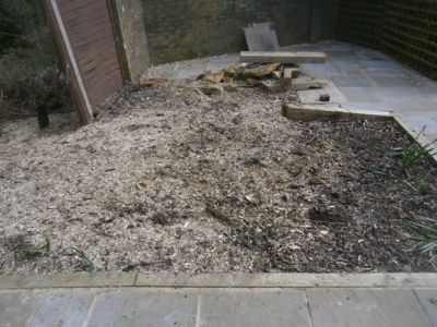 Stump grindings after completion of stump removal
