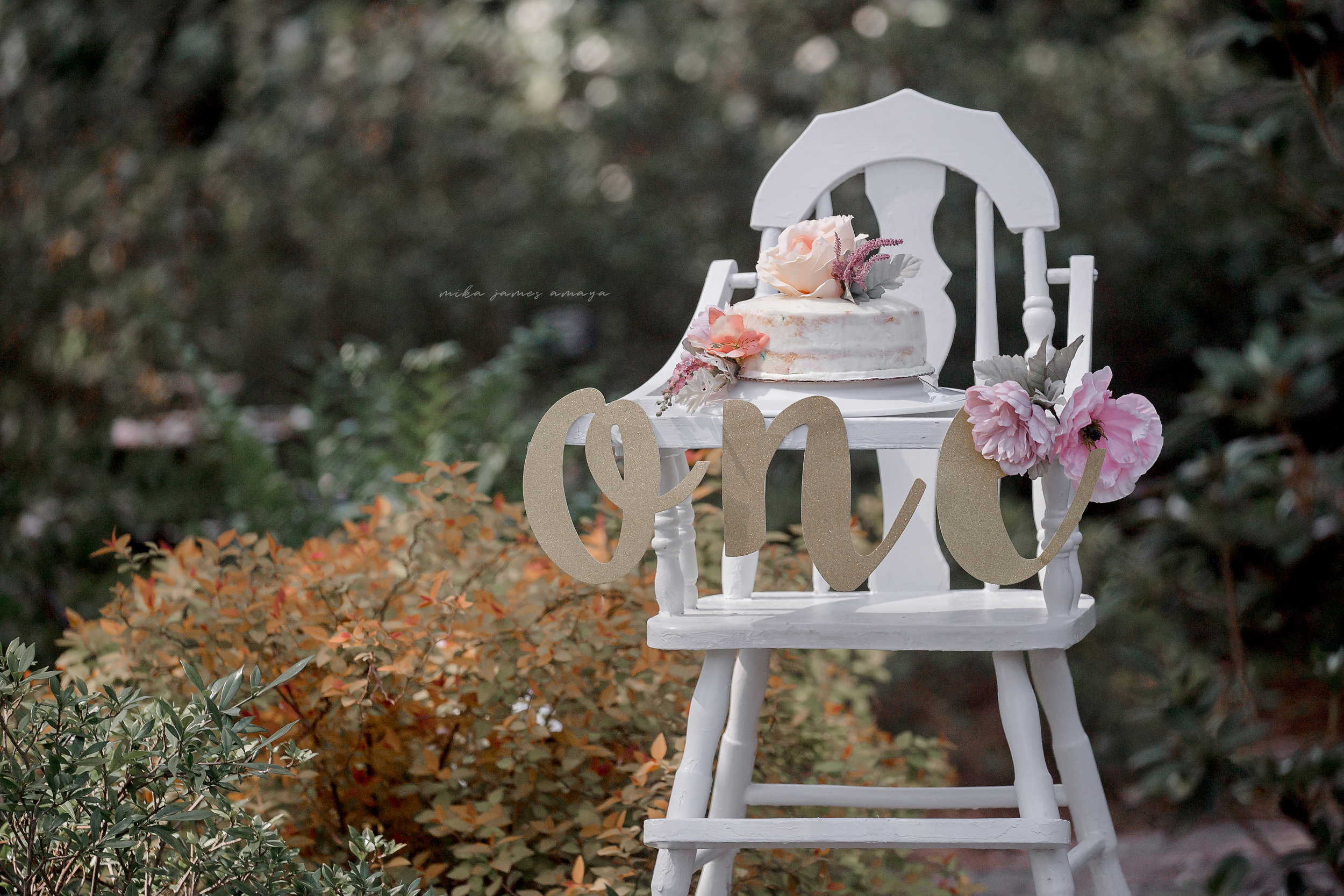 best+raleigh+nc+cake+smash+photographer+_mika+james+amaya+photography+_+raleigh+nc+maternity+photographer+_+raleigh+nc+family+photographer+_+raleigh+WRAL+AZALEA+GARDEN+raleigh+nc+outdoor+maternity+photographer_ Baby (1)