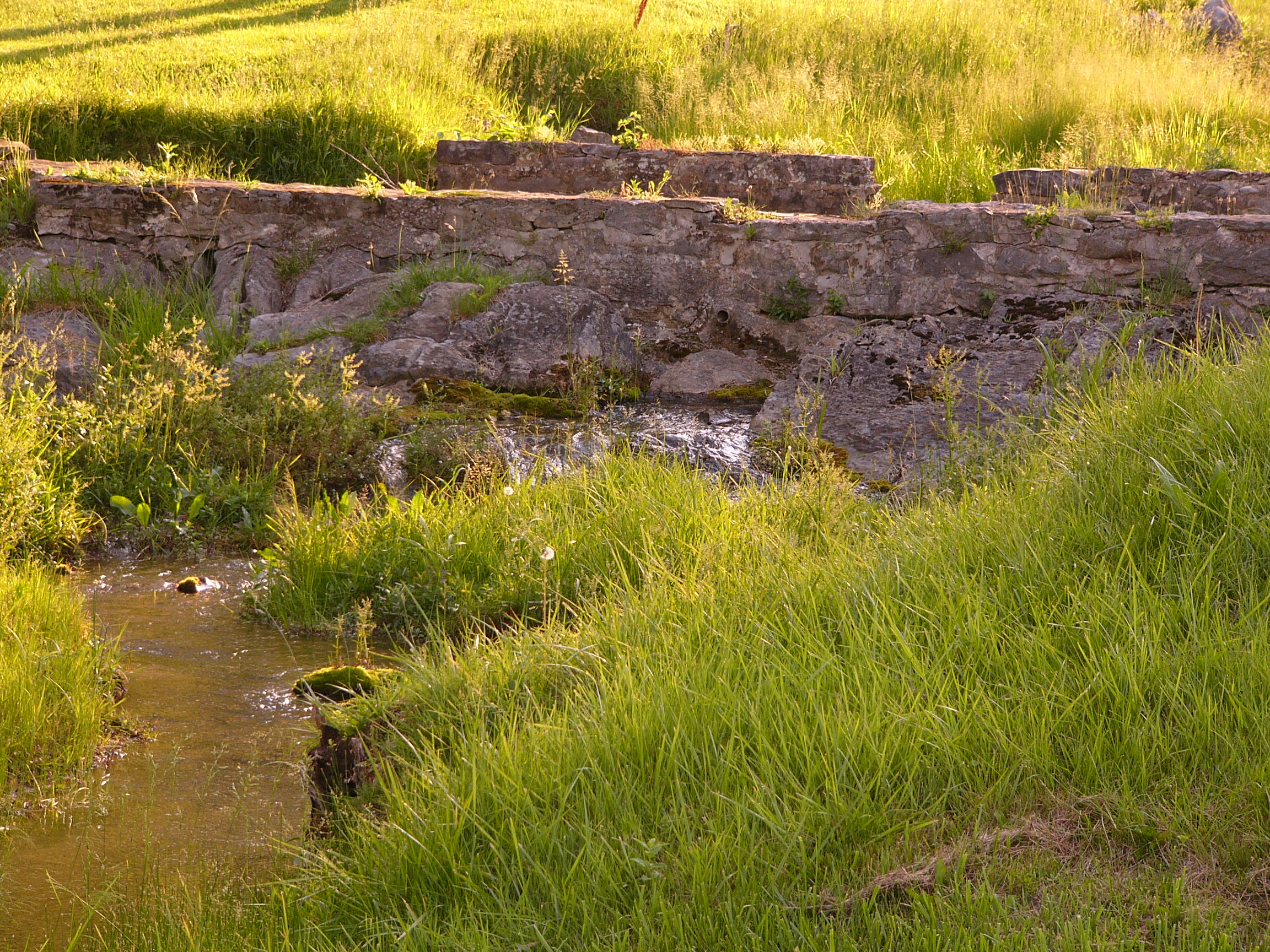 Original spring house foundation on golf course
