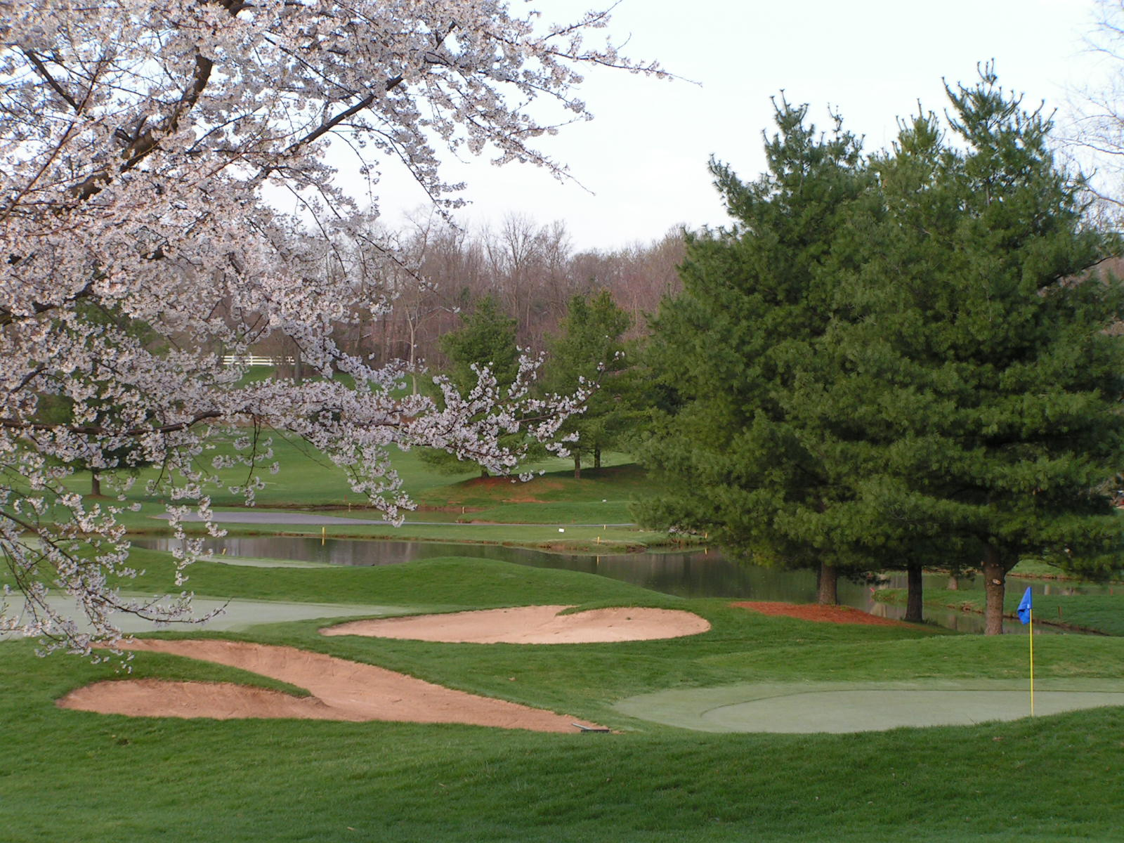 Springtime on the Course