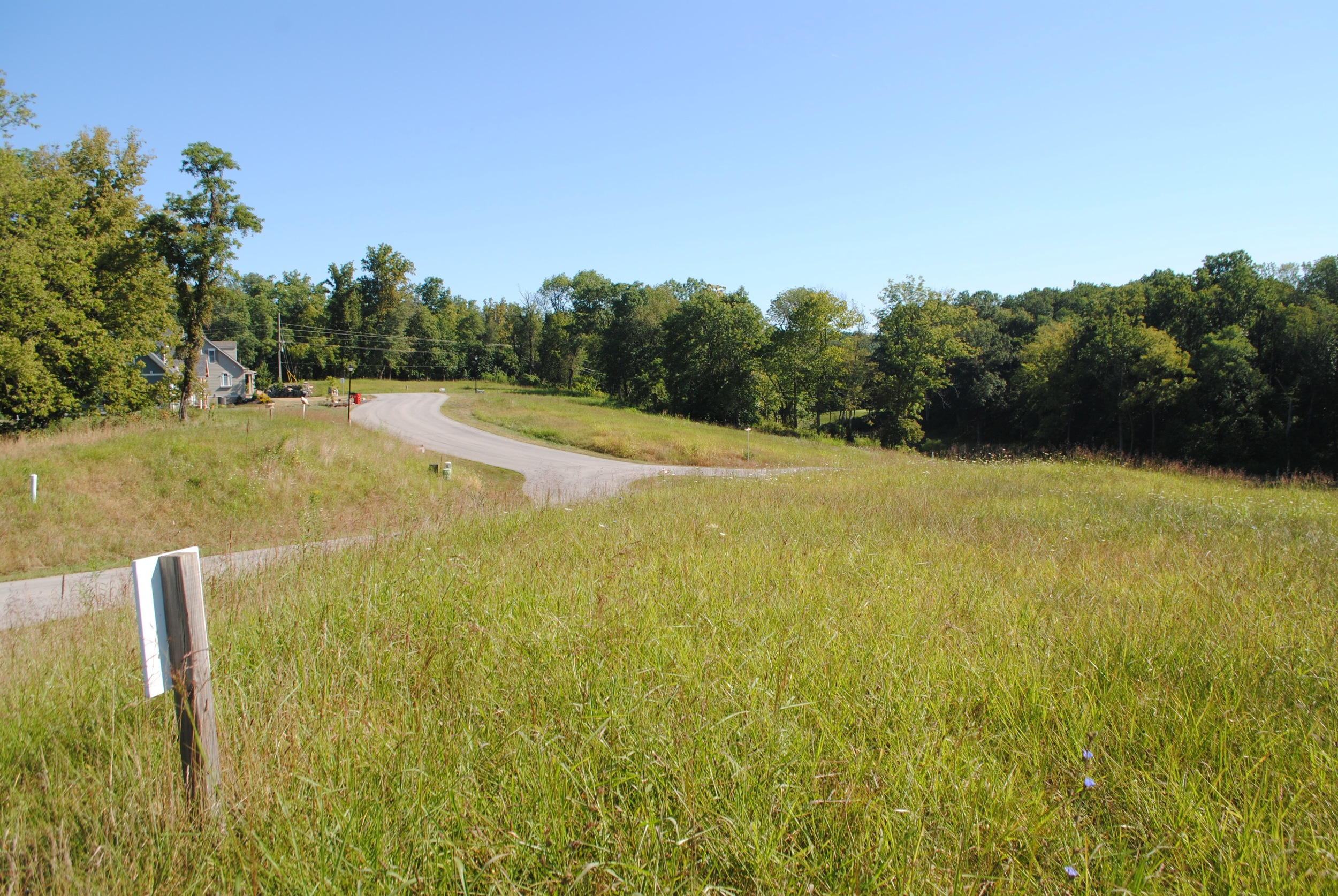 Looking back toward entrance from Lot #6