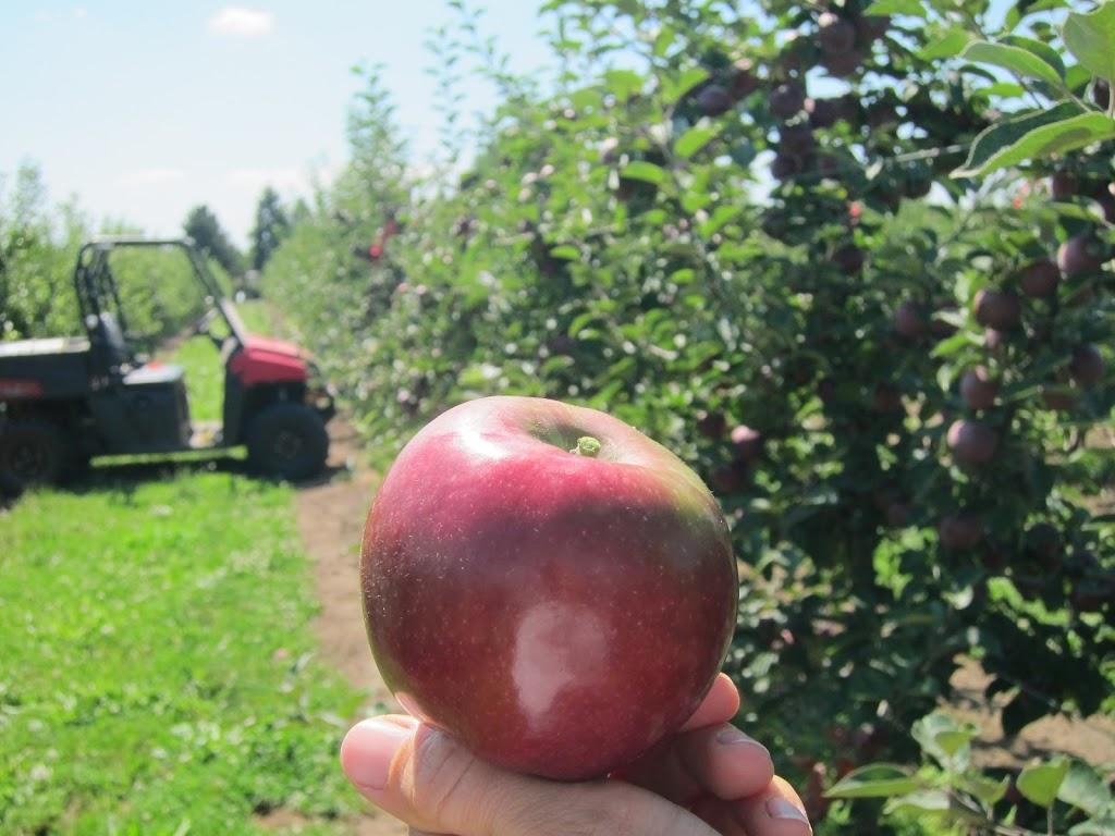 Ruby-Mac-Aug-21-2012-004