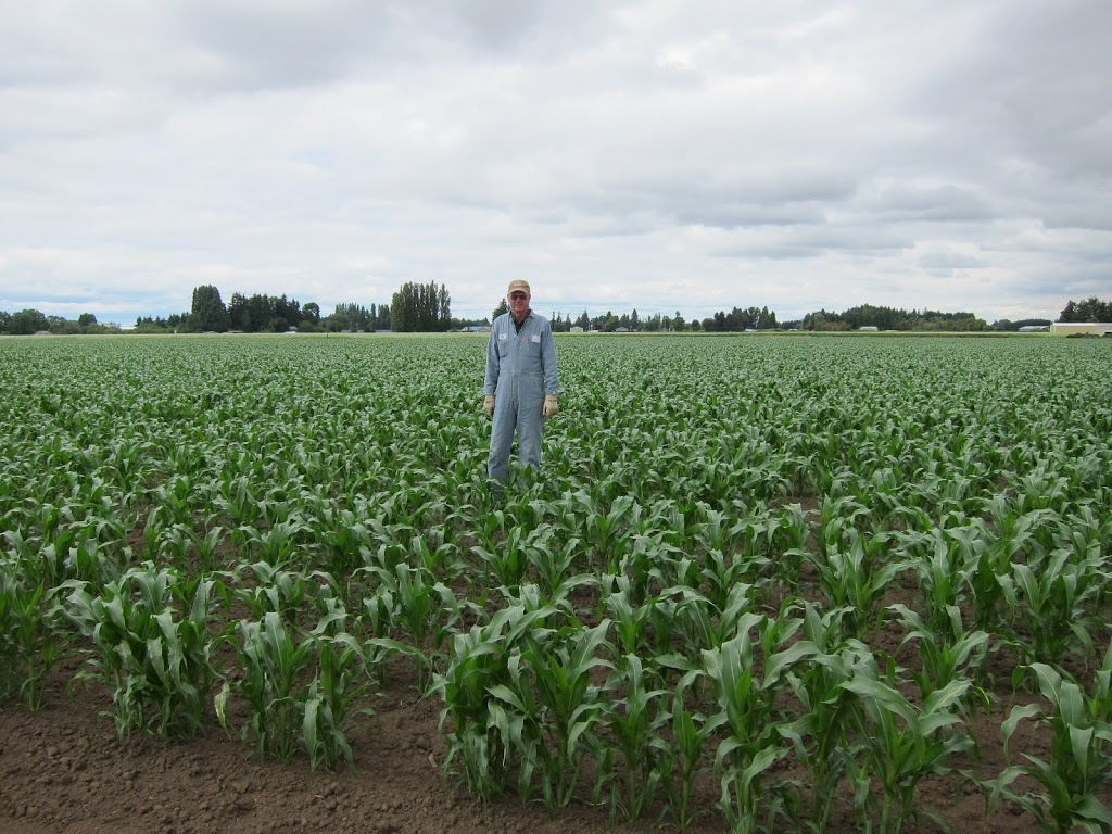 Farm-July-2012-002